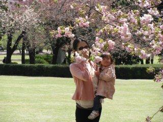 Seorang ibu dan anaknya menikmati sakura