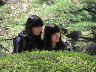 Young girls posing with sakura
