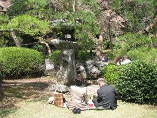 A couple enjoying a picnic during hanami season