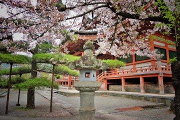 Kofu Zenkoji Temple