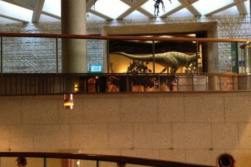 The view that draws you into the Prehistoric area. Check out the natural light from the ceiling