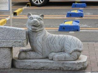 Тигр - Тора