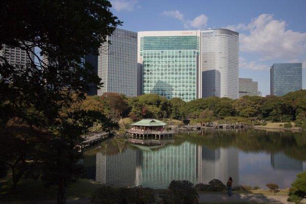Un superbe contraste entre l'ancien et le nouveau au jardin Hama-Rikyû