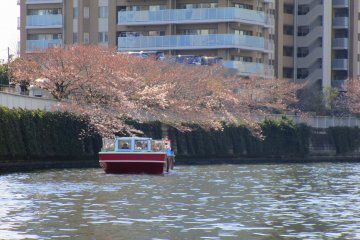 A tour boat making its way down Meguro river