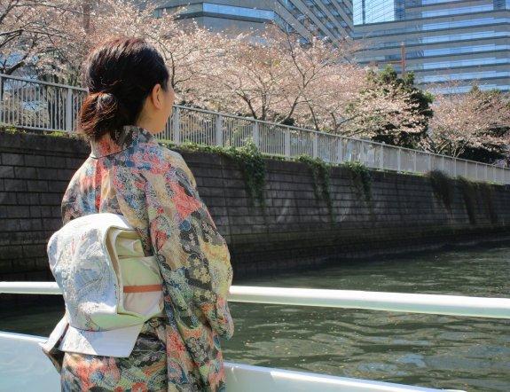 巡遊在櫻花樹冠下