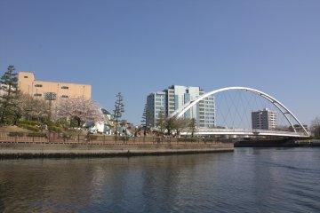 Beautiful waterfront park