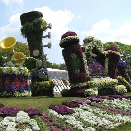 Цветочный парк Хамамацу. Часть 2