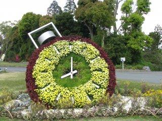 Une horloge de fleurs