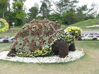 Une tortue toute en fleurs