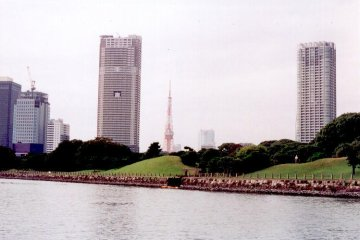 Tokyo Tower From Sumida River