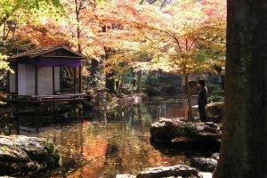 岐阜城內的池塘
