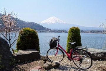 คุณสามารณชมวิวภูเขาฟูจิในหลากหลายลุค โดยการปั่นจักรยานรอบทะเลสาบ