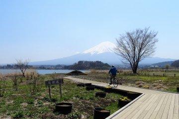 อีกวิวหนึ่งของภูเขาฟูจิ