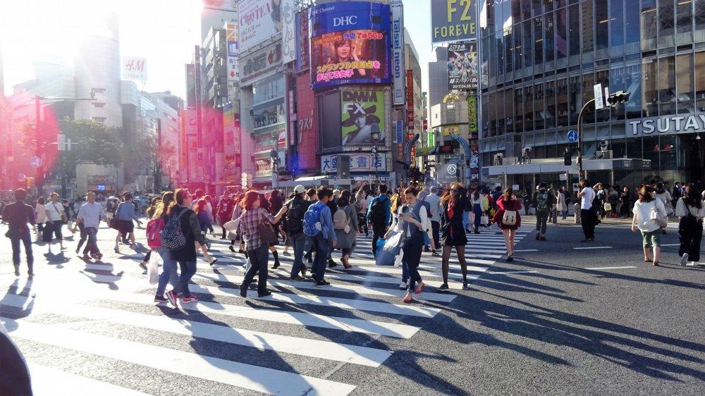 ถัดจากรูปปั้นฮะชิโกะ ก็คือทางแยกเรืองชื่อของกรุงโตเกียว