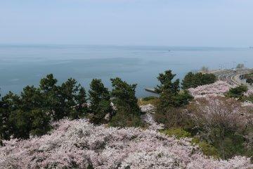Озеро Бива настолько большое, что не видно противоположного берега