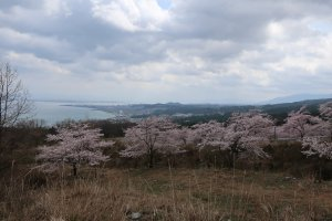 Lake Biwa on the far left