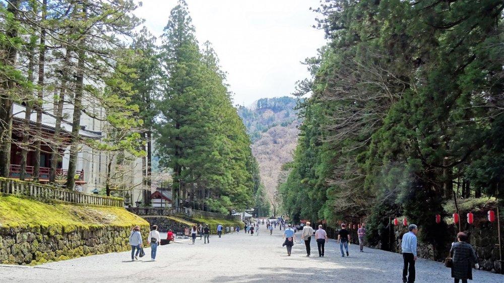 ทางเดินสู่ศาลเจ้าโทะโชะ-กุ
