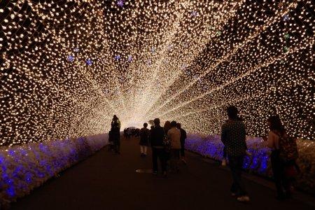Nabana No Sato Spring Illumination