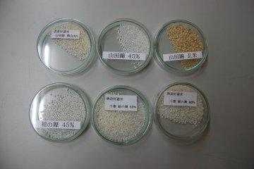 Sake rice at varied states of polishing
