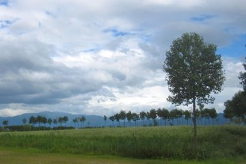 <p>บนทางเดินไปสู่ทะเลสาบ</p>