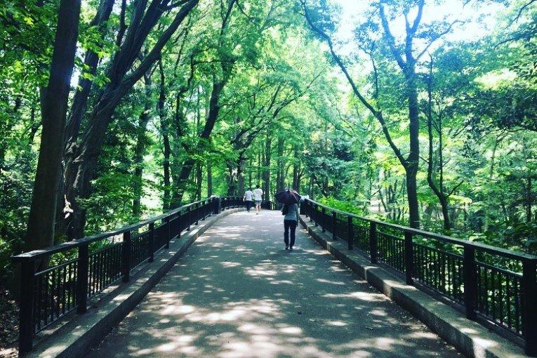Công viên rừng Rinshi