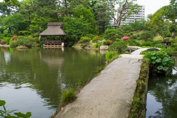 Shukkei-en, an Edo period garden from 1620. It was destroyed but later replanted after the dropping of the atomic bomb.