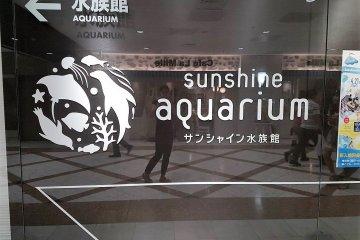พิพิธภัณฑ์สัตว์น้ำซันไชน์ หรือ ซันไชน์ อควาเรี่ยม (Sunshine Aquarium)