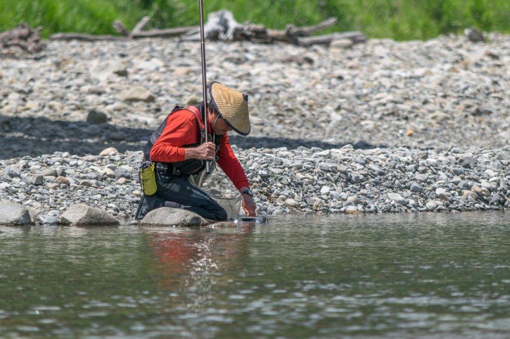 A local villager fishing on the Hiki-gawa river, Chikatsuyu.