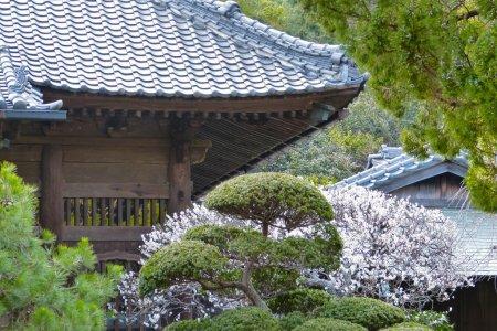 Templo Jufuku-ji, Kamakura