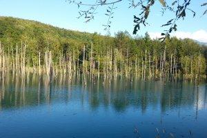 L'étang bleu de Biei