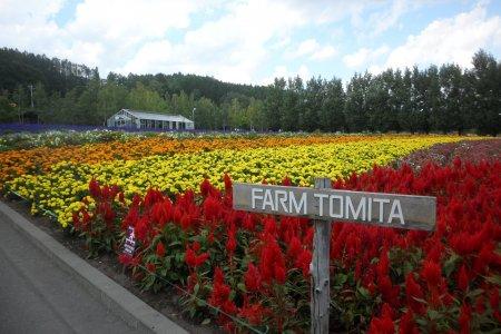 A Different Hokkaido