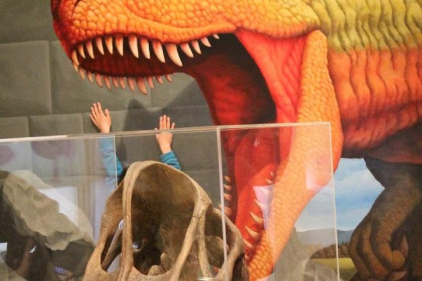 The Ehime Prefectural Science Museum is a scream!