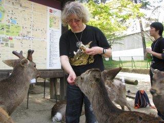 Кормление оленей в парке Нары