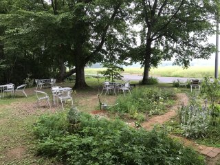 Le jardin à l'extérieur du café principal
