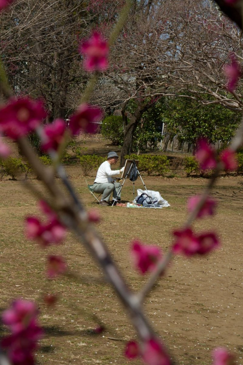 <p>Painting blossoms; some local painters come here to capture the start of the season.</p>