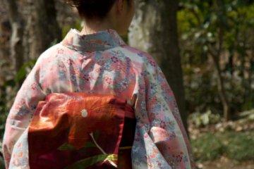 <p>The Kimono pattern of the Plum Blossom Ambassadors matches the season</p>