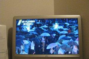 Репортаж о тайфуне по ТВ