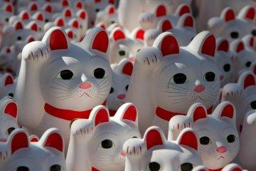 Maneki Neko, the 'lucky cat'