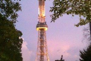 季節や時間によって姿を変えるタワー
