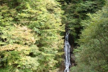 บนเส้นทางเดินป่าแห่งนี้ มีสถานที่อยู่หลายจุดที่คุณสามารถหยุดพักทานอาหารกลางวัน หรือหยุดชมวิว