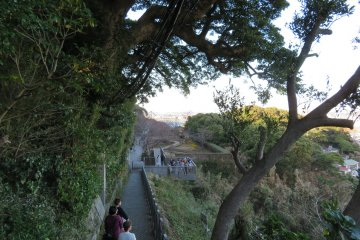 One of many walking paths on the Island