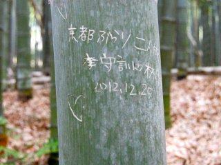 Tình yêu trên cây tre #2