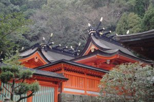 Les toitures du Nachi-taisha.