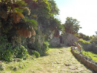 A mossy path with time-worn stones at Naka castle