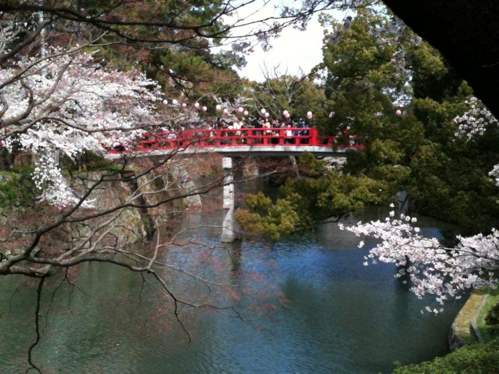The bridge crossing the moat to Okazaki Castle is a popular photo spot