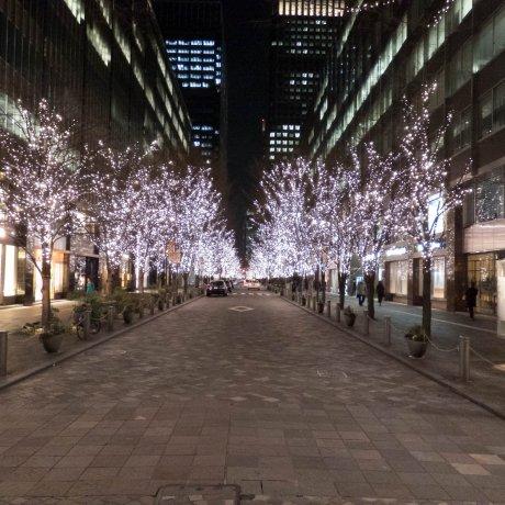 Iluminasi Musim Dingin Marunouchi