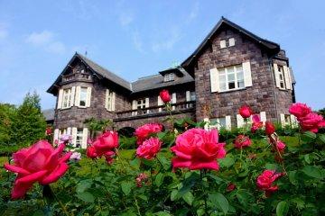เทศกาลดอกกุหลาบที่ Kyu Furukawa
