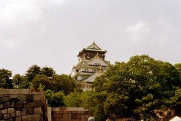Osaka Castle beyond the trees