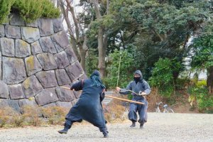 Ninja battle at entrance to castle