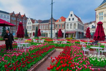 Visiting Huis Ten Bosch
